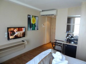 Petals Inn room and TV view